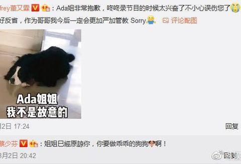董又霖为爱犬咬伤蔡少芬道歉:一定会严加管教