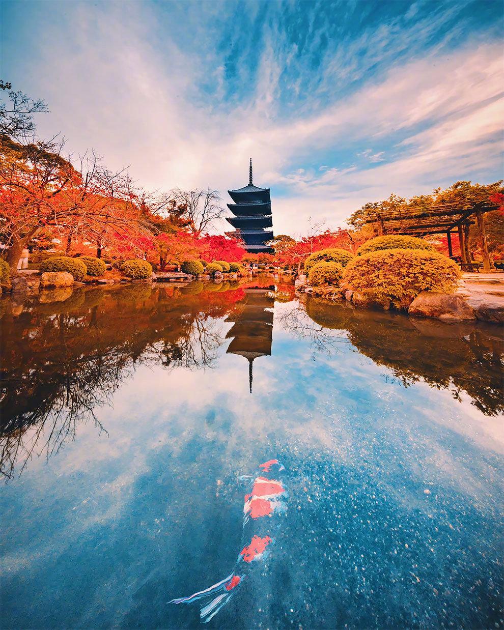 京都和奈良的深秋。