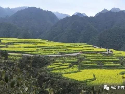 关注!贵州对农村地区网络宽带及4G网络覆盖进行挂牌督战