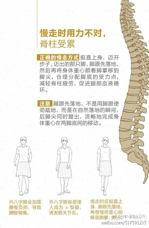 趁年轻保护脊柱,远离肩颈腰背不适