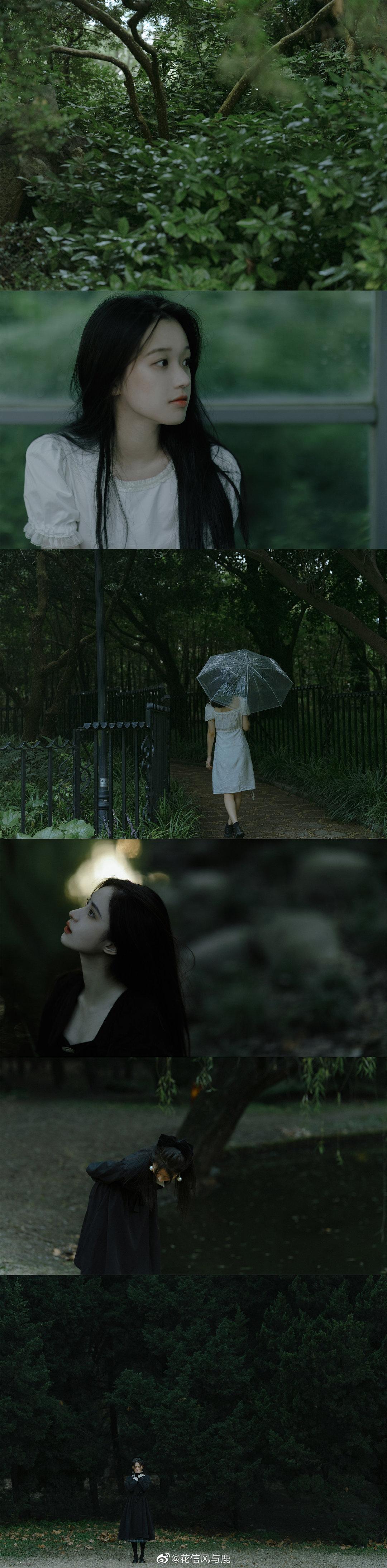 绿色限定 💚@花信风与鹿