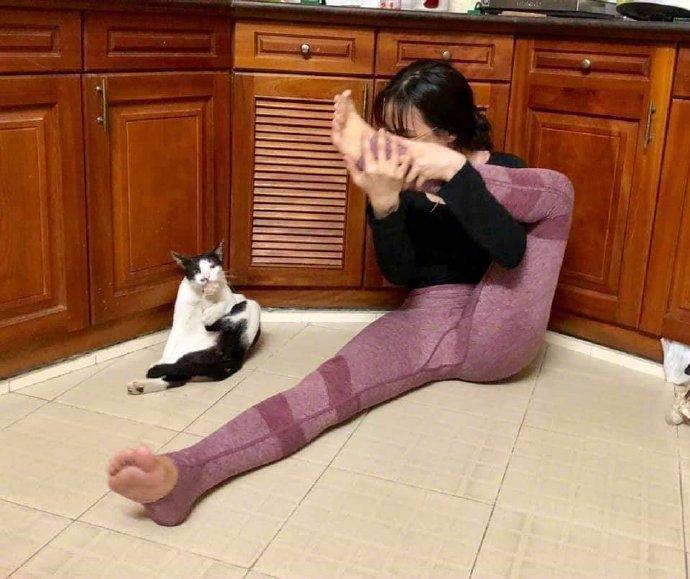 铲屎官在做瑜伽,猫咪就学着一起做,姿势一模一样!