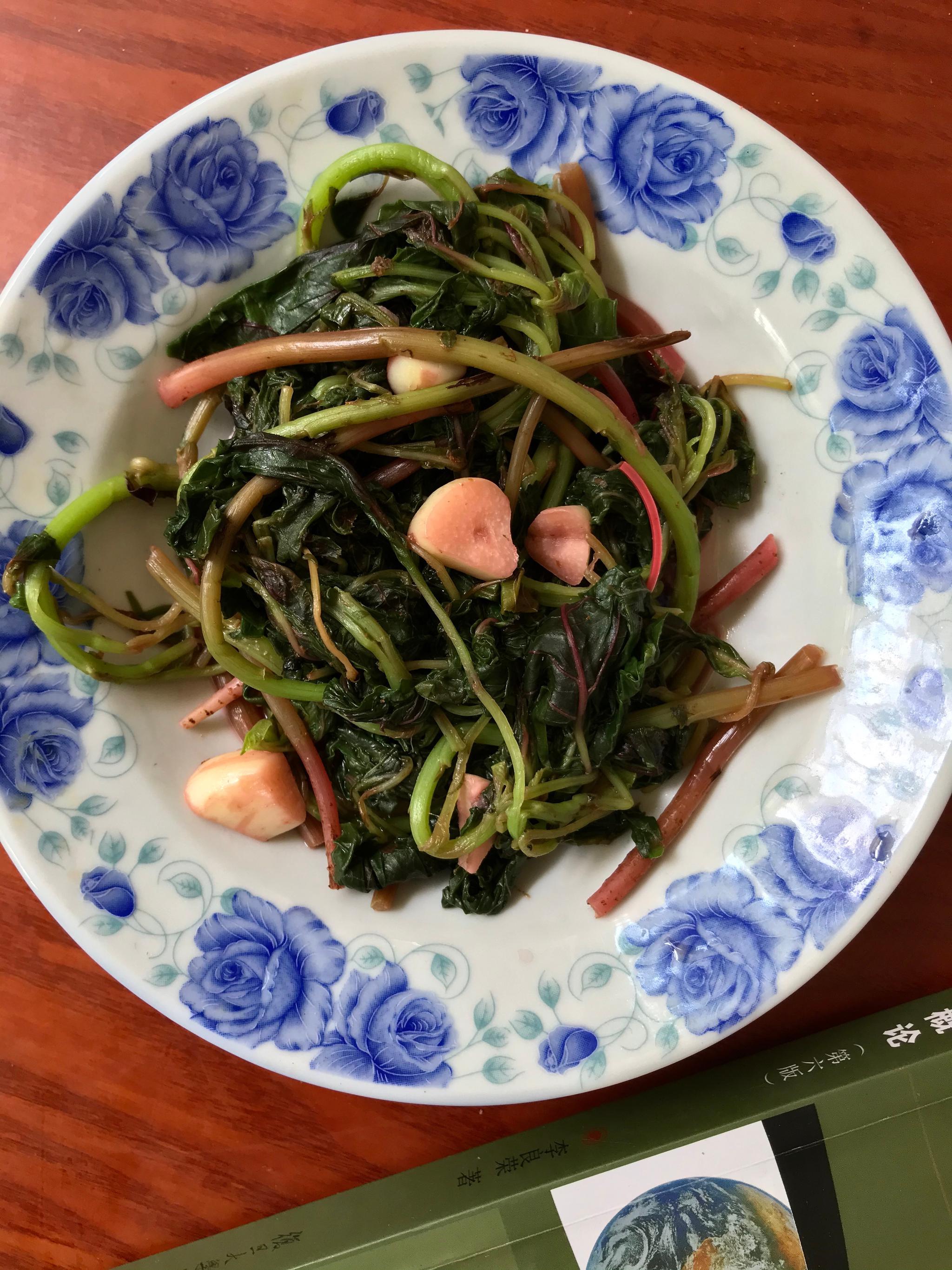 在家里发现一个好看的盘子红嘴绿鹦哥脆脆皮考肠安排