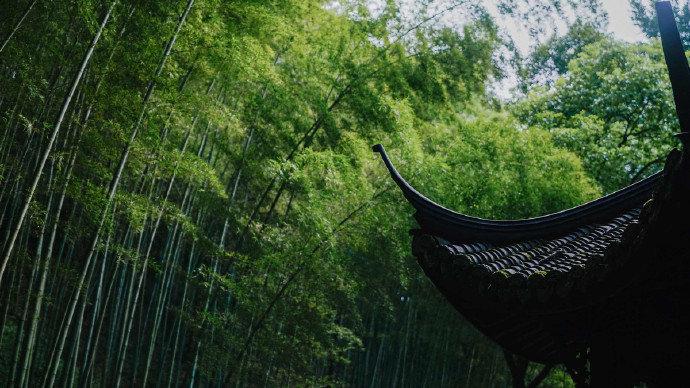 带雨有时种竹,关门无事锄花早安