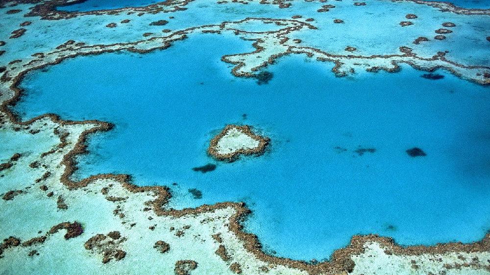 环状珊瑚礁究竟是怎样形成的?这回连达尔文都可能犯错了