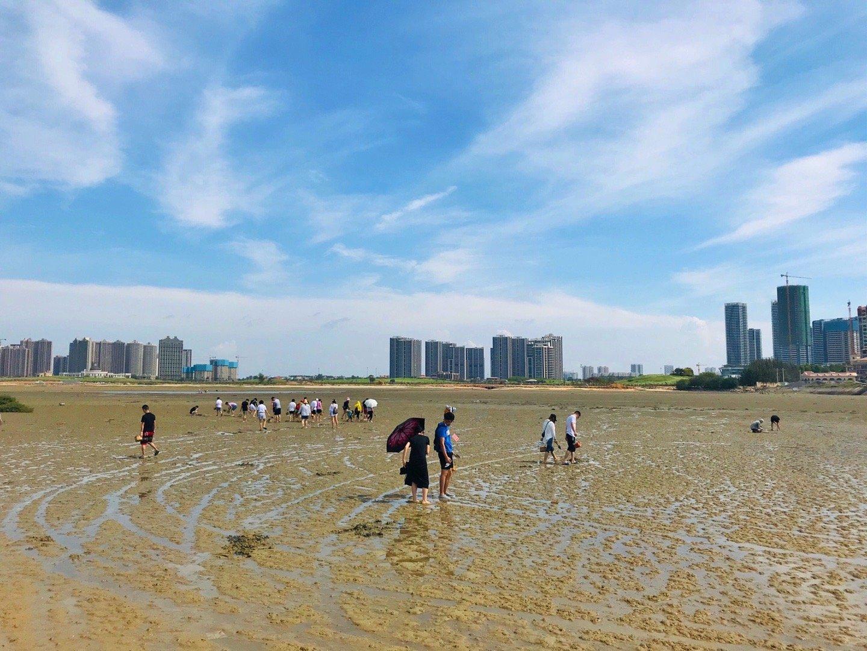 这个夏天一定要去的地方,那就是北海银滩~体验疍家赶海,拖网