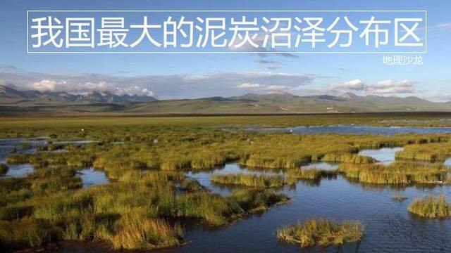 """位于青藏高原的""""若尔盖沼泽"""",是我国最大的泥炭沼泽分布区"""