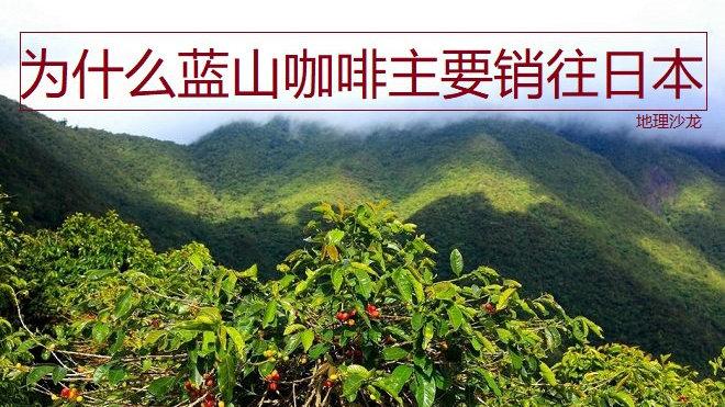 牙买加蓝山山脉十分适宜咖啡种植,为什么蓝山咖啡主要销往日本?
