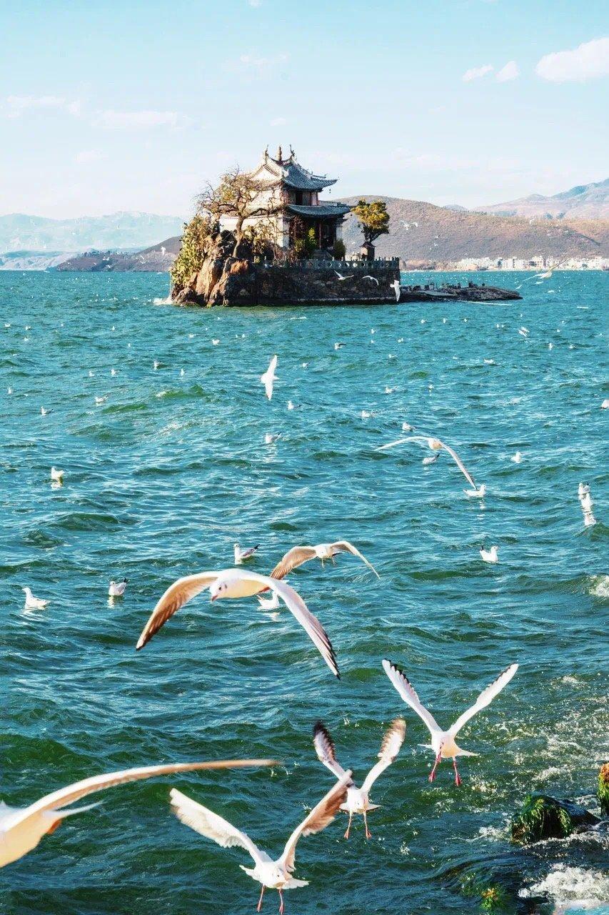 苍山洱海畔,风花雪月间,大理总有一种美,吸引着你。