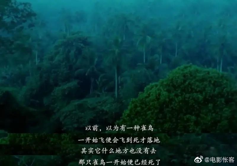当年王家卫的第二部电影《阿飞正传》首映场,开场三分钟后
