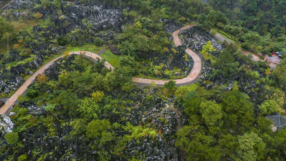 没想到在千岛湖有个这么大的喀斯特地貌景区,是我国四大石林之一