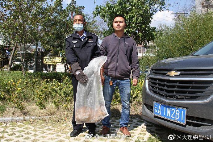 """随着新冠肺炎疫情在中国的蔓延,""""爱护野生动物"""
