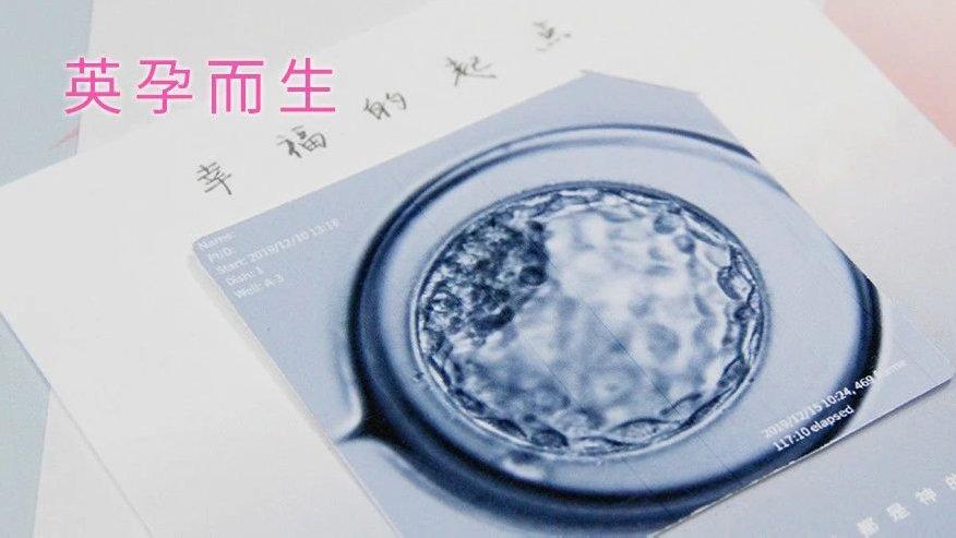 关于囊胚级别,看这一篇就够!  英科技