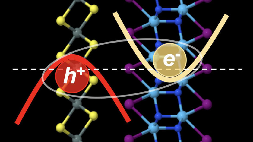 激子在某些二维材料组合中形成超流体