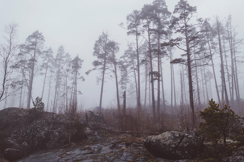 卡累利阿,低调的北欧仙境©俄罗斯摄影师Erika Parfenova