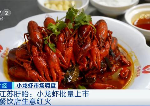 大批量上市!小龙虾餐馆是不是门好生意?