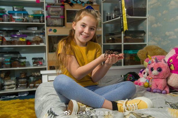 英国一八岁女孩养了50多只狼蛛、两条蛇、一条蝎子、千足虫、蚱蜢、蟑
