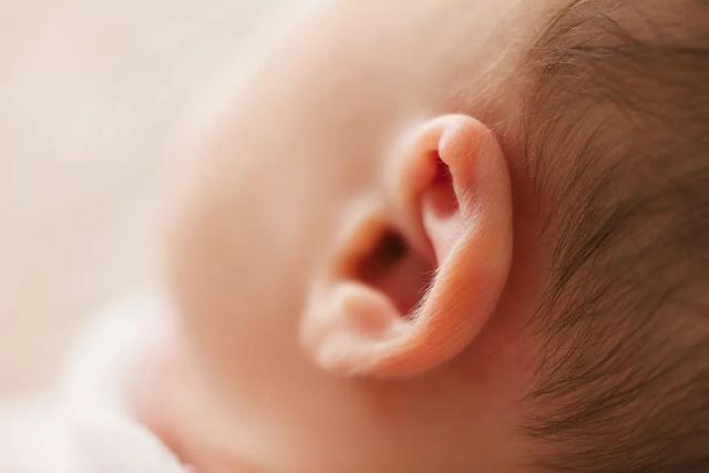 「健康养生」=͟͟͞͞轰=͟͟͞͞隆=͟͟͞͞隆=͟͟͞͞ 耳鸣如蝉心好烦,养耳护耳可以用这四个方法