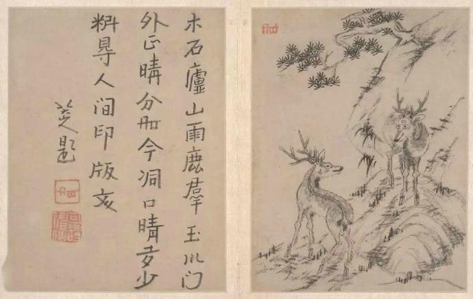 可能因为八大山人曾遁入佛门数十年,参禅修道