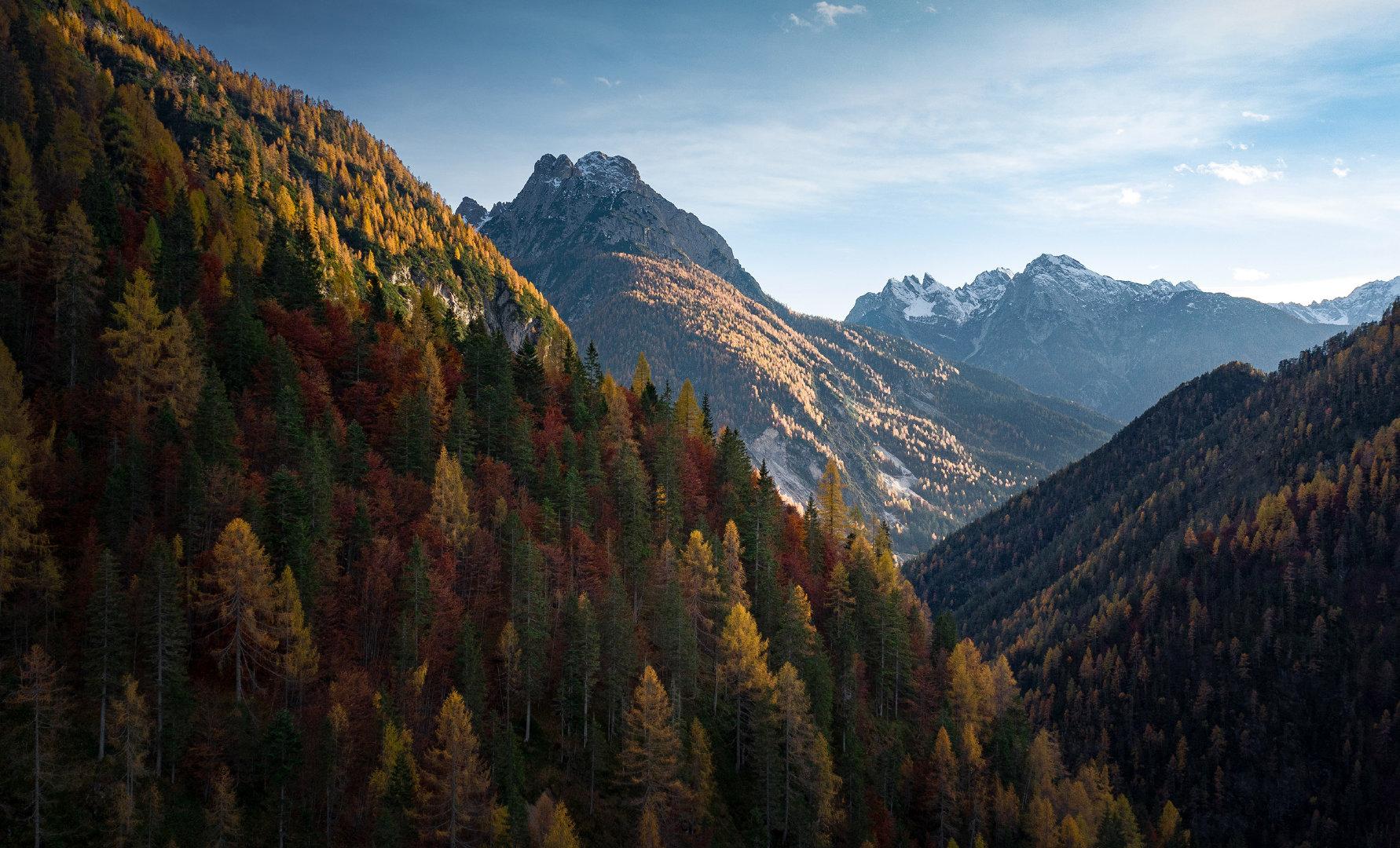 山毛榉、冷杉和落叶松组成了多洛米蒂 Val Visdende 山谷的秋色