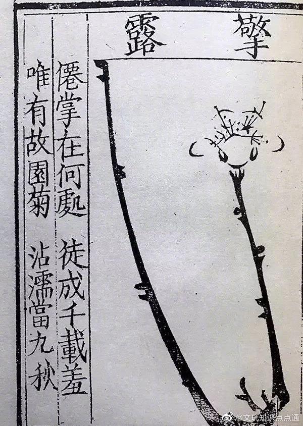 《梅花喜神谱》是中国第一部专门描绘梅花的木刻画谱