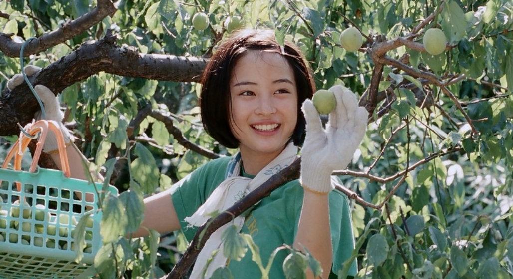 欢乐总是乍现就凋落,走得最急的,都是最美的时光。——席慕蓉