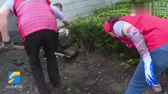 31秒 | 东营市广饶县融媒体中心组织开展全员志愿服务活动