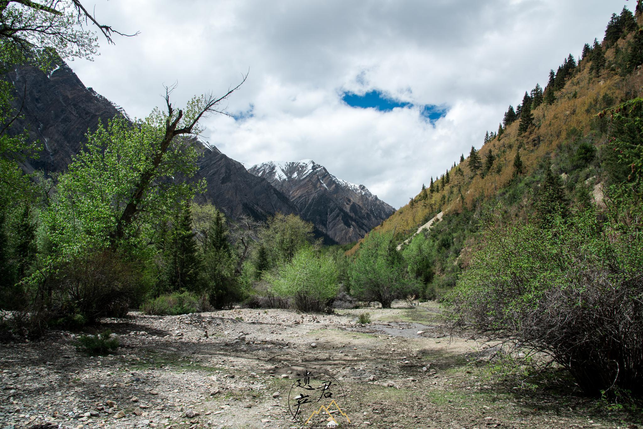 西藏林芝,米堆冰川,位于北纬29度,雪线海拔4600米