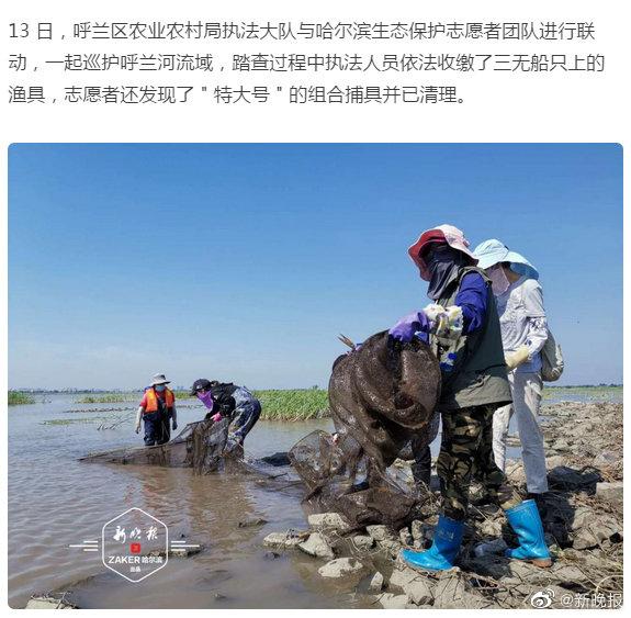 """""""特大号""""捕具组合潜伏呼兰河,清理它4名志愿者用了半小时"""
