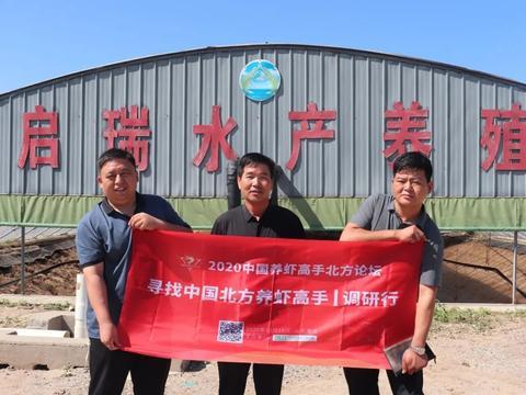海壬虾苗,成为了环渤海地区高密度养殖的新贵