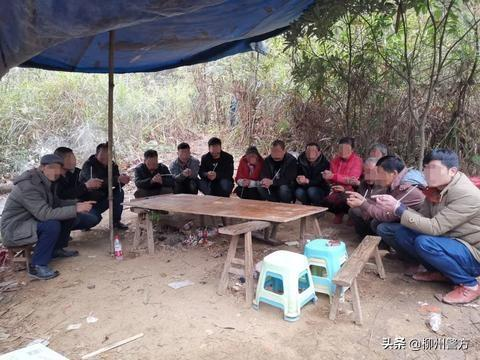 14名男女躲在野外干这事被警方一锅端