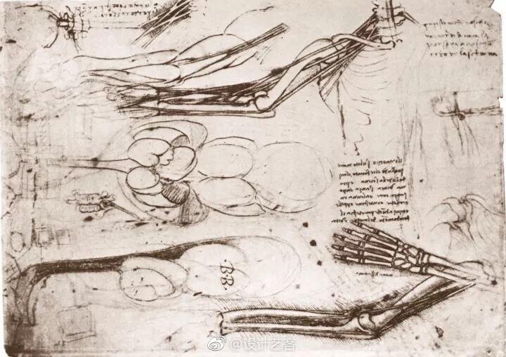 神一般的达芬奇和他的绘画手稿…