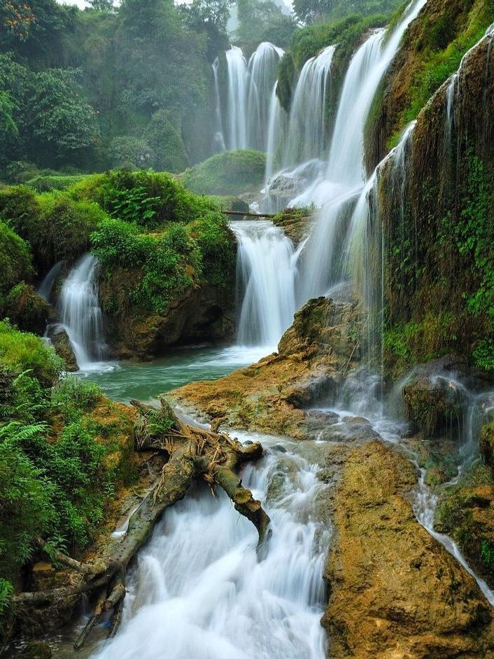 知者乐水,仁者乐山。知者动,仁者静;知者乐,仁者寿。