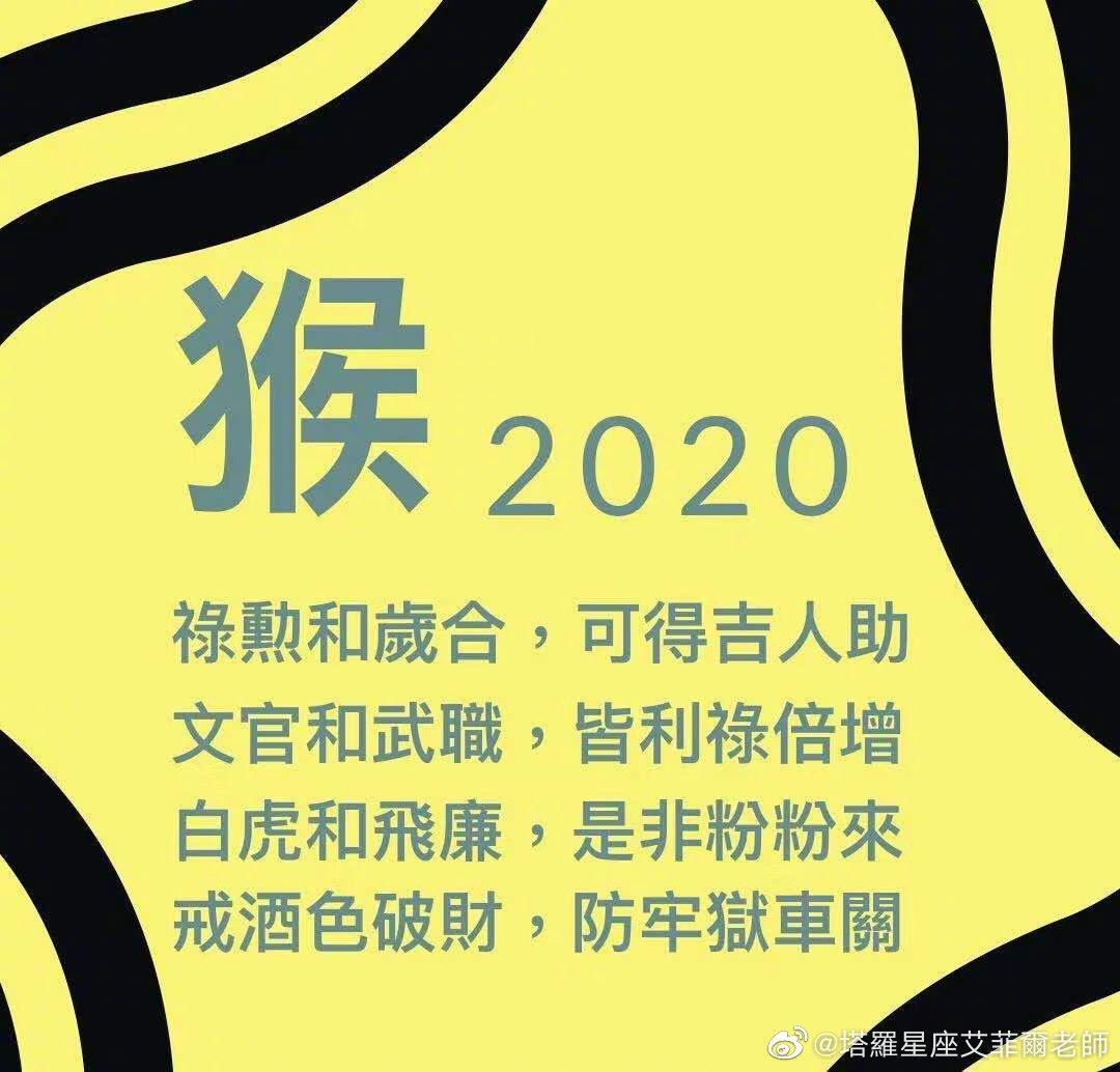 2020运势:生肖猴安稳无忧之年