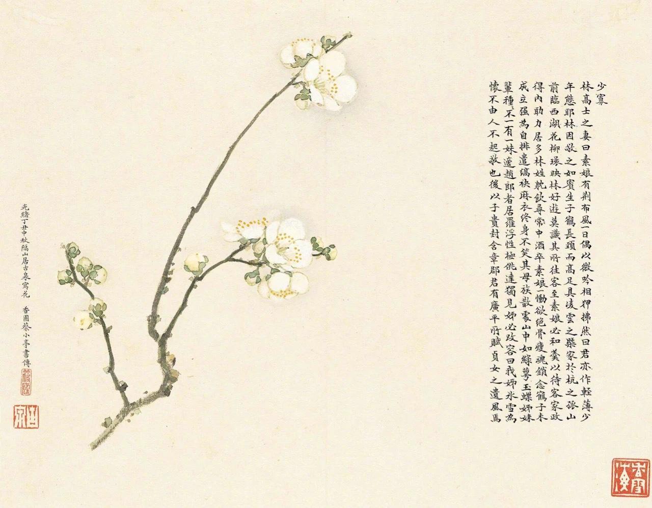 (1828-1904)《群芳竞妍册》设色纸本本册花卉写于一八七七年中秋