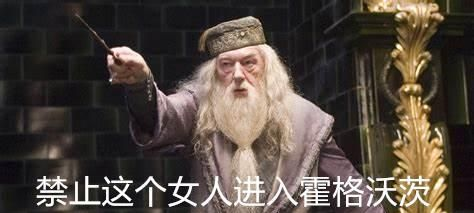 《哈利波特》:魔法界两位畅销书作家,一个靠胡编,一个靠剽窃