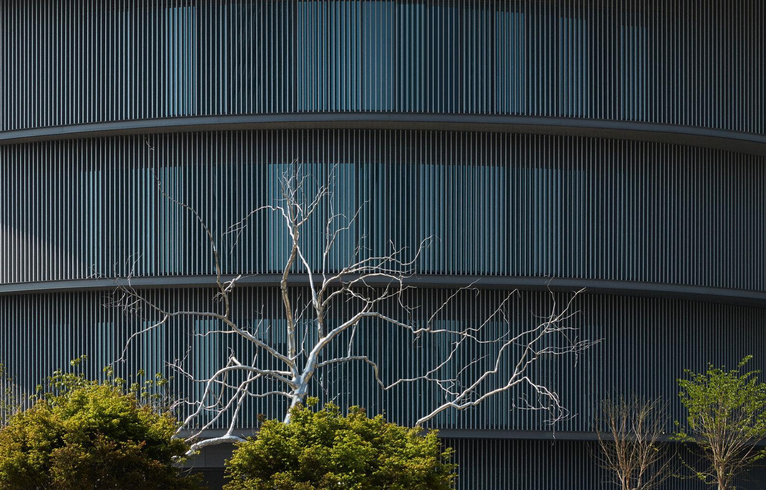安藤忠雄中国作品——位于广东顺德的和美术馆即将开放