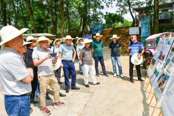 桃花源举行白麟洲旅游开发项目规划设计方案初评会
