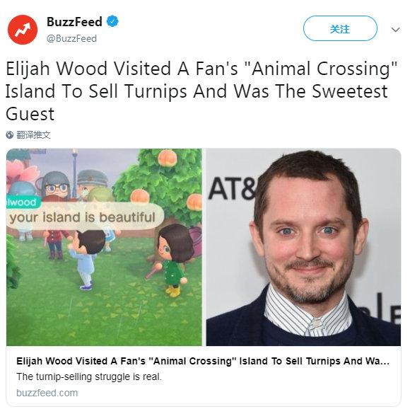 据BuzzFeed报道、一名动物森友会玩家jessa发推说自家岛上的大头菜599