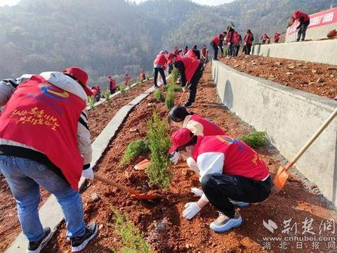 黄石临空经济区千名志愿者学雷锋美化家园