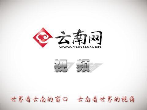 保护创作创新 云南文化人集体为版权工作打call
