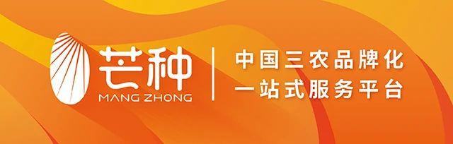 <strong>莽农业品牌第一次在莲乡西部农产品区直</strong>