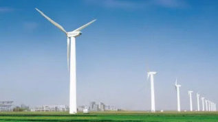 """腾讯今天启动的""""碳中和""""是什么?它源于一个种树的商业创意"""