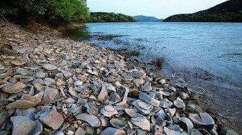 """奇幻上林湖,文化""""活化石"""""""