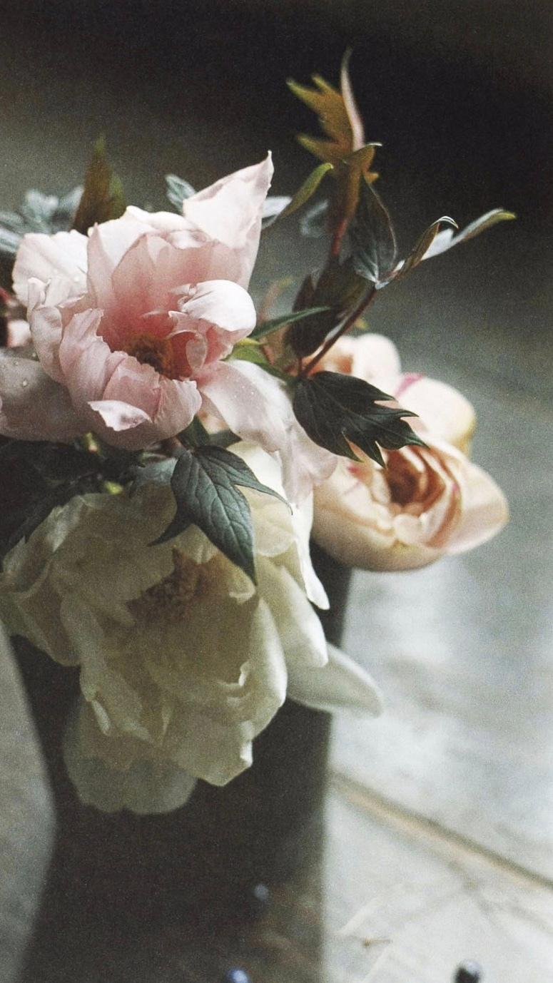 伊东美咲  2003年写真集《美咲》上田义彦