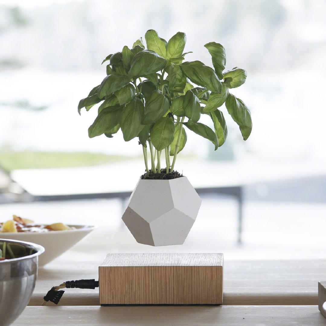 可360°磁悬浮的植物花盆设计。价格不便宜,40