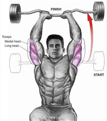 练习肱3头肌图解合集,很不错的1些动作练习肱3头肌,利用哑铃,杠铃