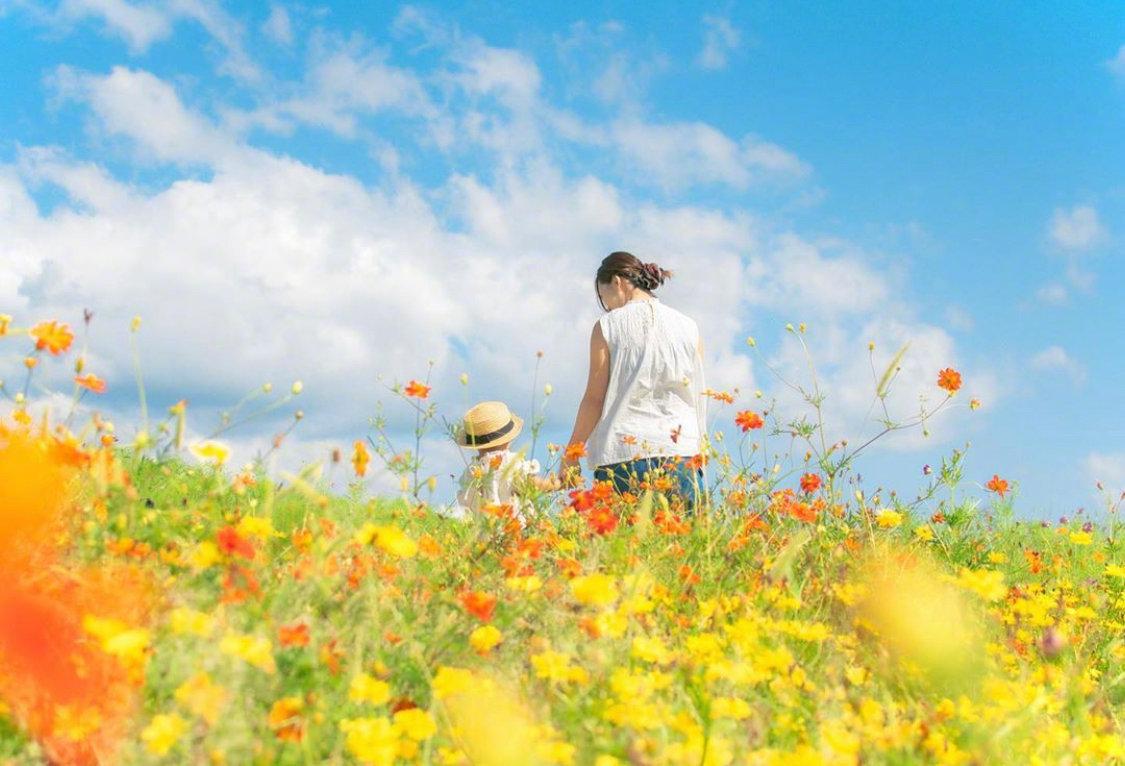 旅途中总有那么一刻当你抬头望向天空的时候会觉得宫崎骏、新海诚没