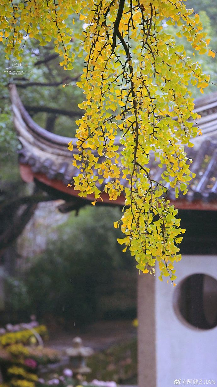 惠山古镇 ,全国重点文物保护单位