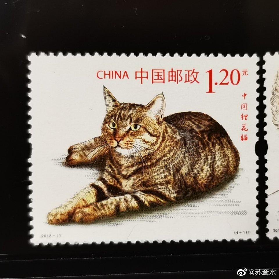 中国邮政2013年发行的猫系列邮票